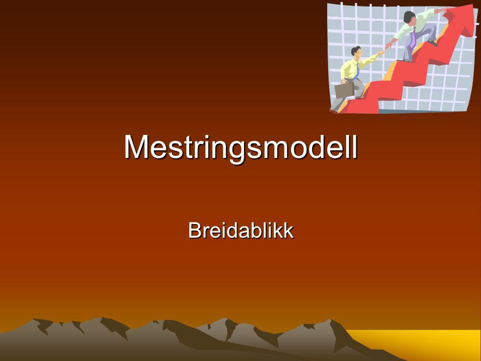 Mestringsmodell Breidablikk