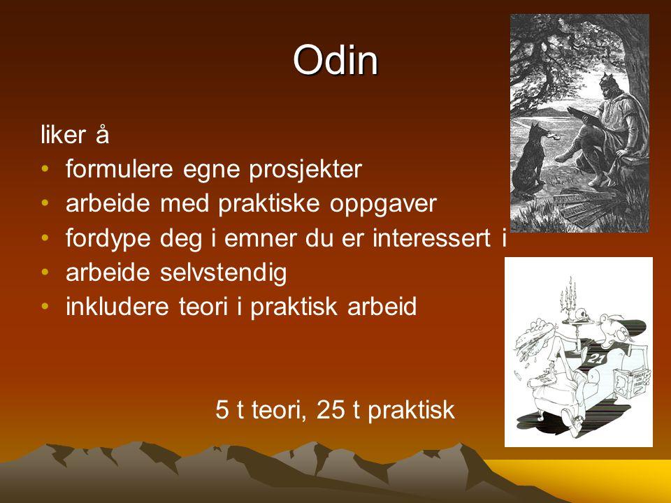Odin liker å formulere egne prosjekter arbeide med praktiske oppgaver