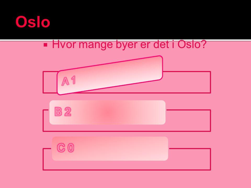 Hvor mange byer er det i Oslo