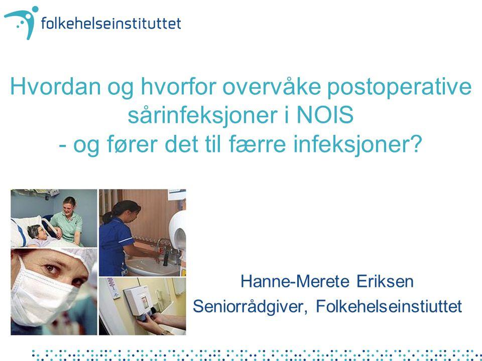 Hanne-Merete Eriksen Seniorrådgiver, Folkehelseinstiuttet