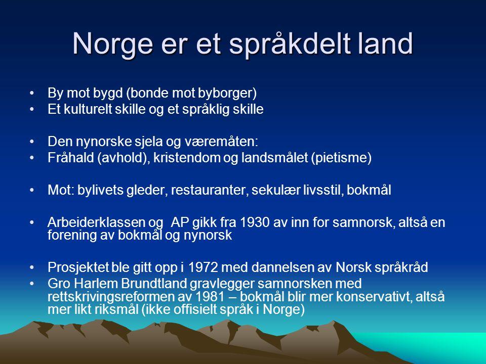 Norge er et språkdelt land