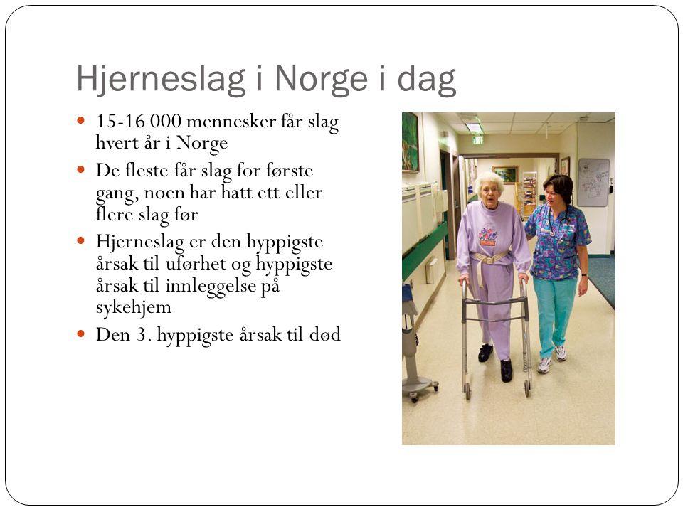 Hjerneslag i Norge i dag