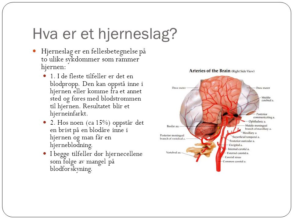Hva er et hjerneslag Hjerneslag er en fellesbetegnelse på to ulike sykdommer som rammer hjernen: