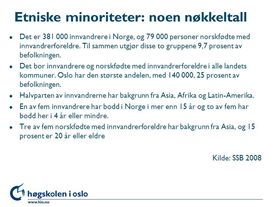 Etniske minoriteter: noen nøkkeltall
