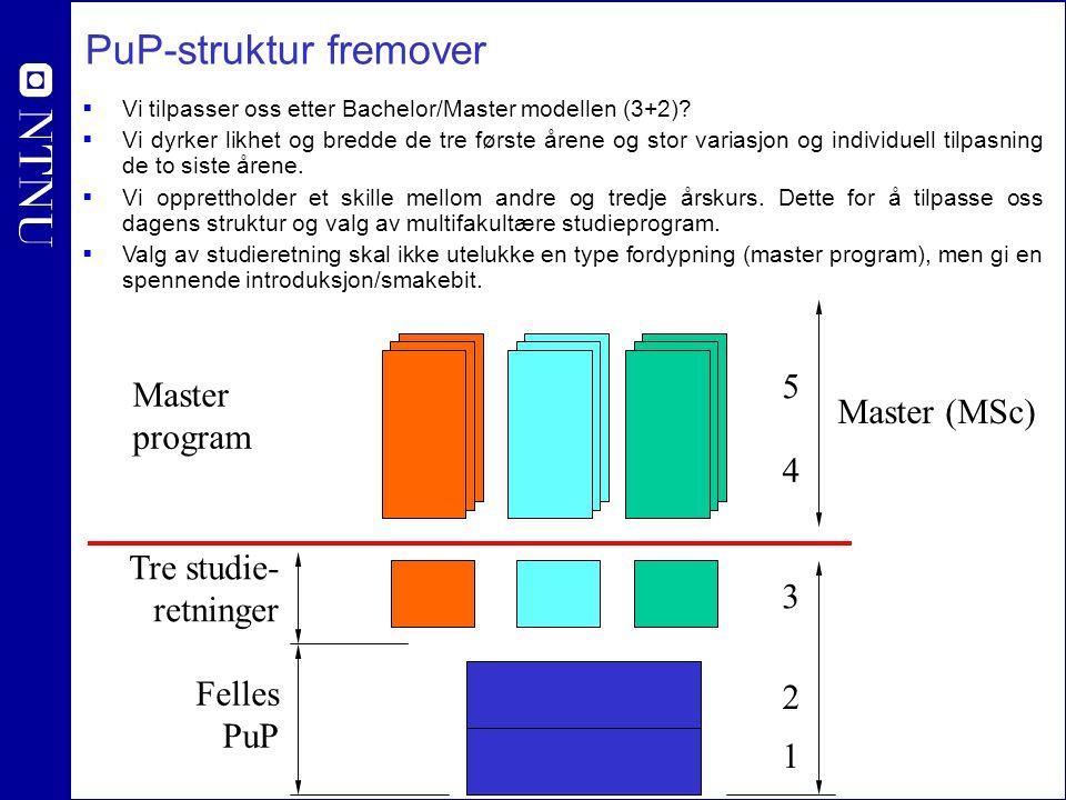 PuP-struktur fremover