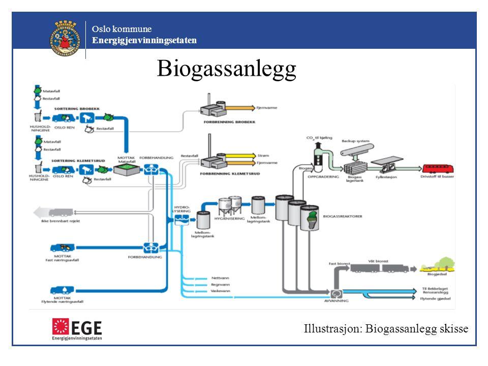 Biogassanlegg Illustrasjon: Biogassanlegg skisse