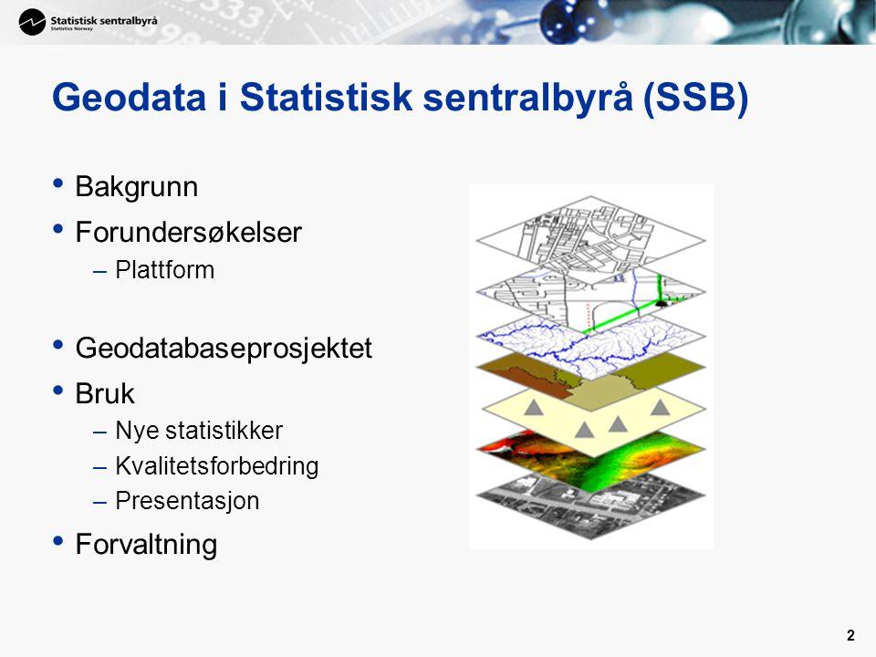 Geodata i Statistisk sentralbyrå (SSB)