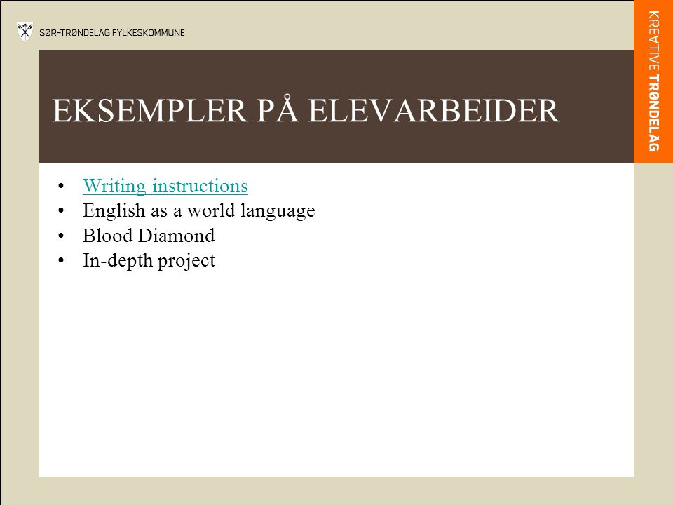 EKSEMPLER PÅ ELEVARBEIDER