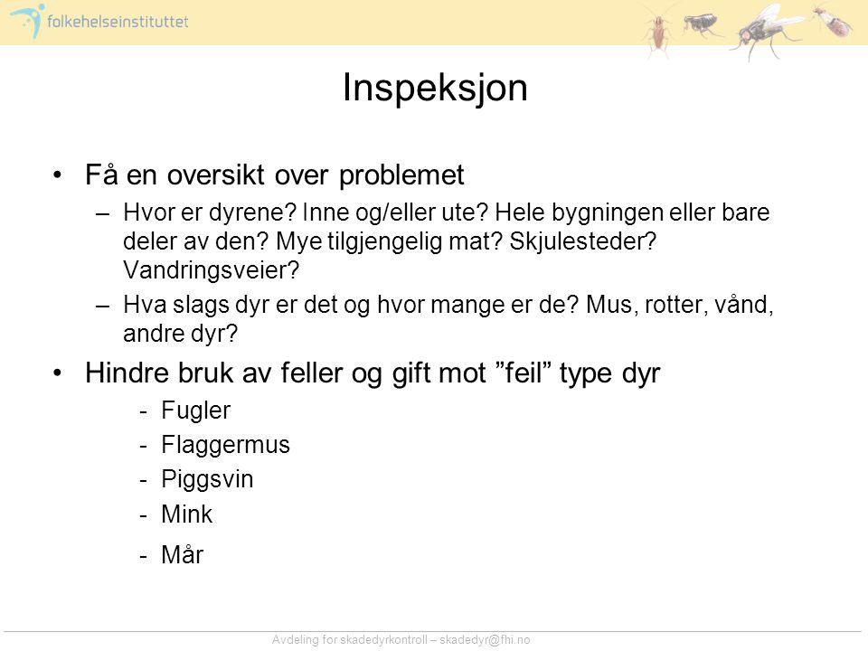 Inspeksjon Få en oversikt over problemet