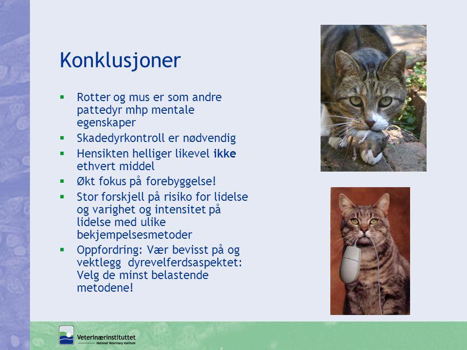 Konklusjoner Rotter og mus er som andre pattedyr mhp mentale egenskaper. Skadedyrkontroll er nødvendig.