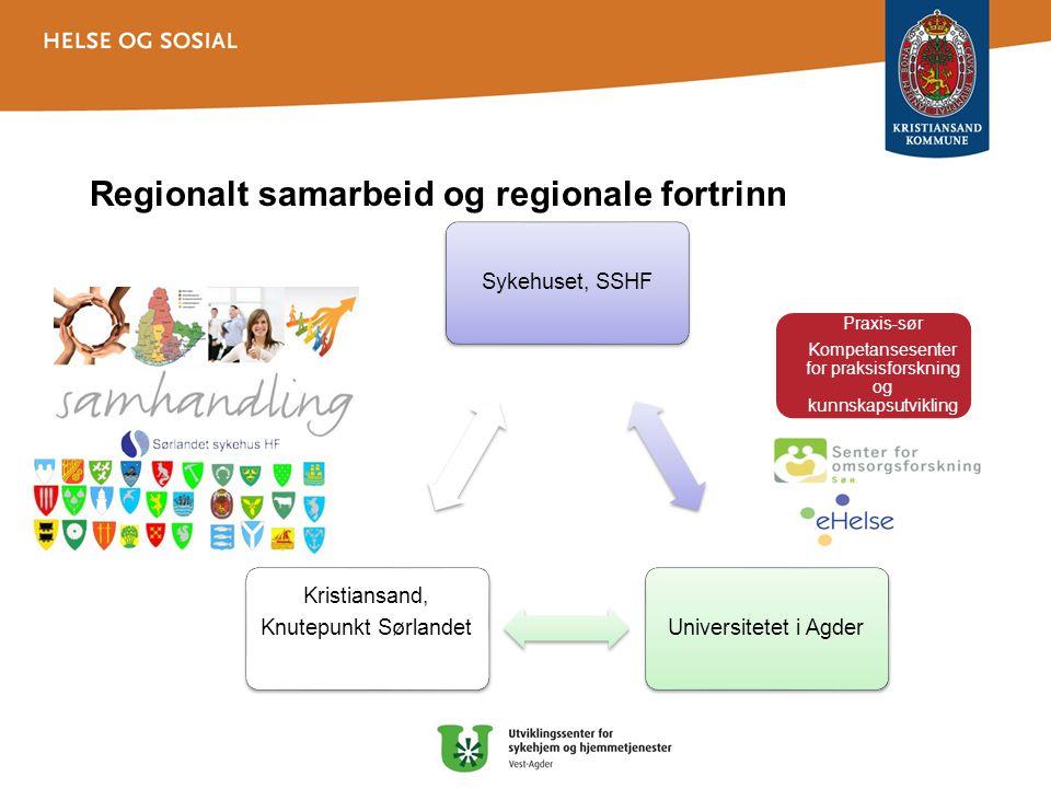 Regionalt samarbeid og regionale fortrinn