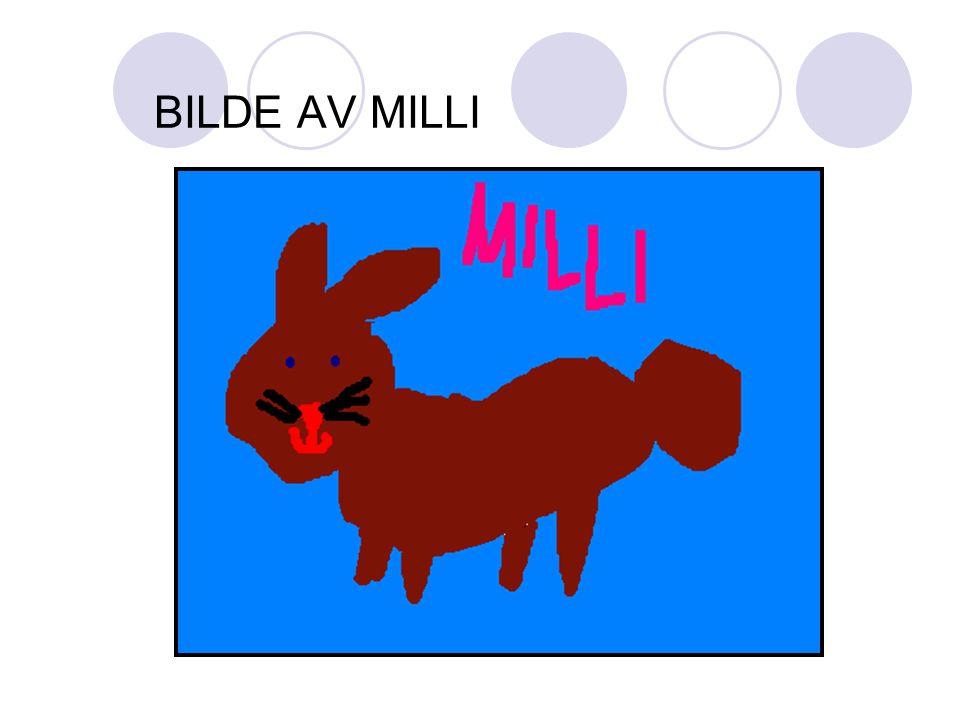BILDE AV MILLI