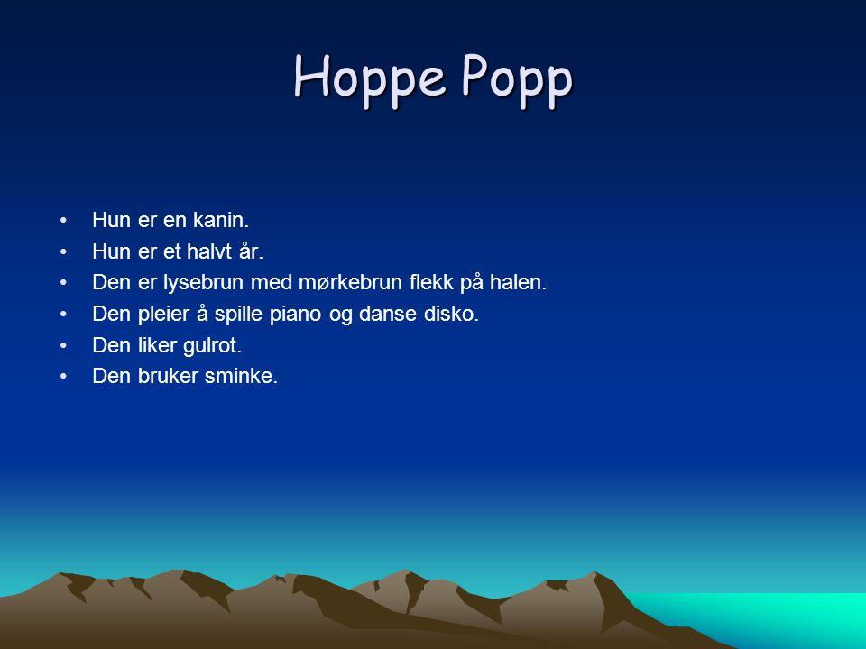 Hoppe Popp Hun er en kanin. Hun er et halvt år.
