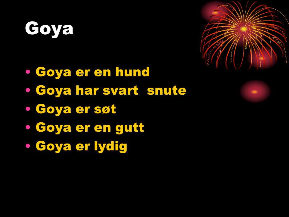 Goya Goya er en hund Goya har svart snute Goya er søt Goya er en gutt