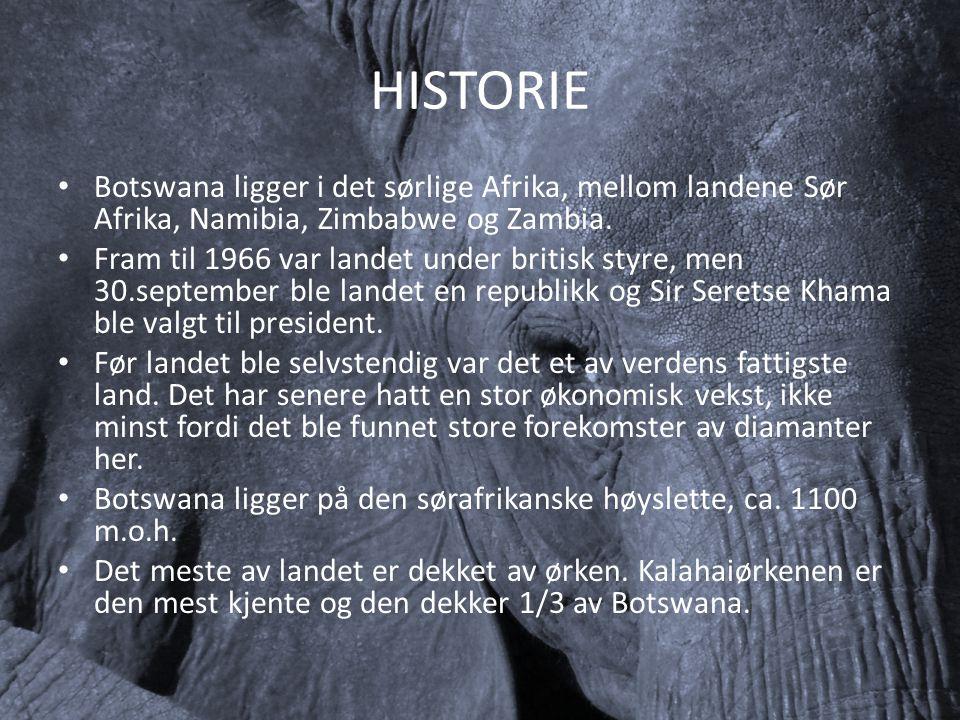 HISTORIE Botswana ligger i det sørlige Afrika, mellom landene Sør Afrika, Namibia, Zimbabwe og Zambia.