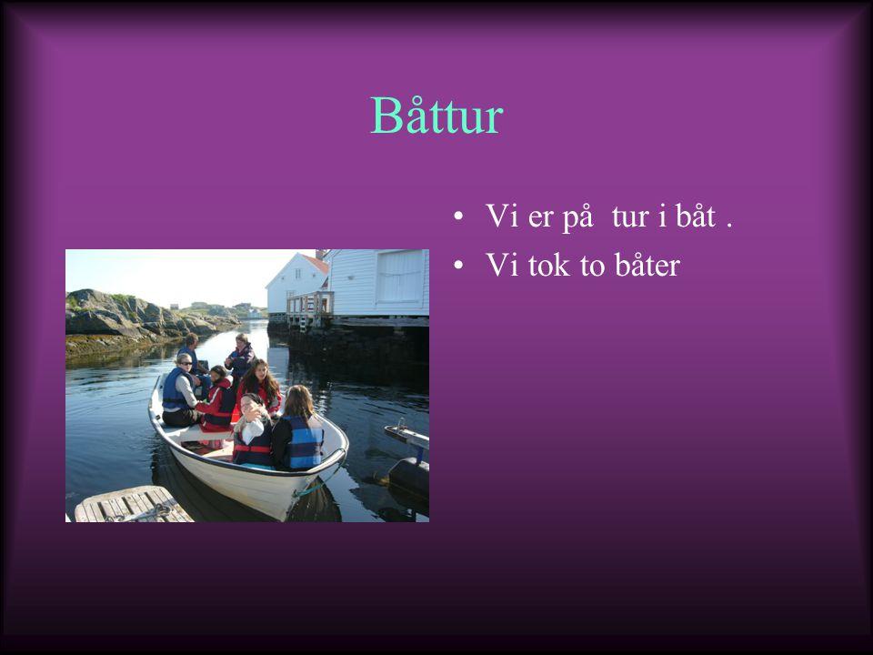 Båttur Vi er på tur i båt . Vi tok to båter