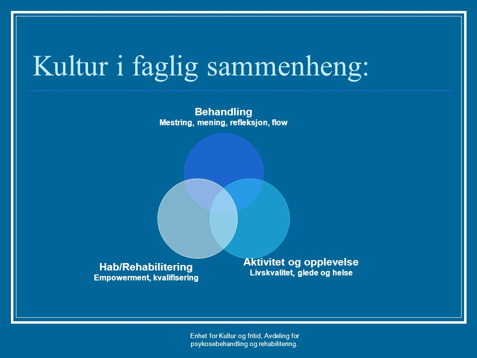 Kultur i faglig sammenheng: