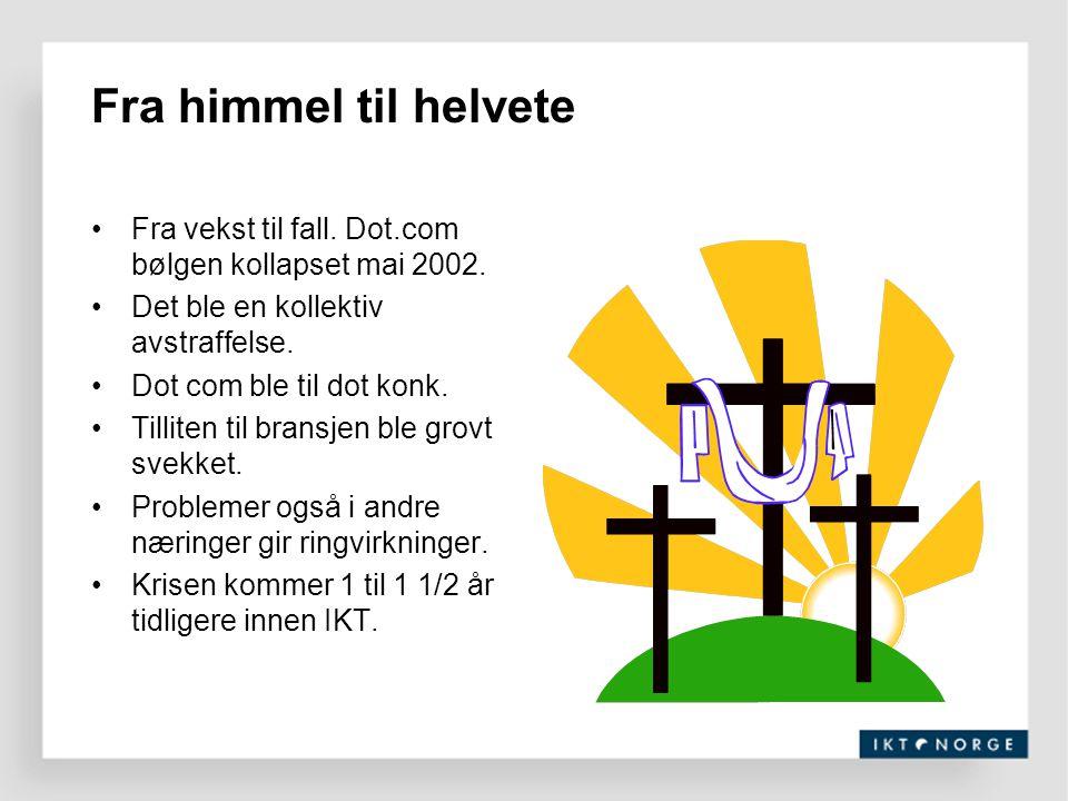 Fra himmel til helvete Fra vekst til fall. Dot.com bølgen kollapset mai 2002. Det ble en kollektiv avstraffelse.