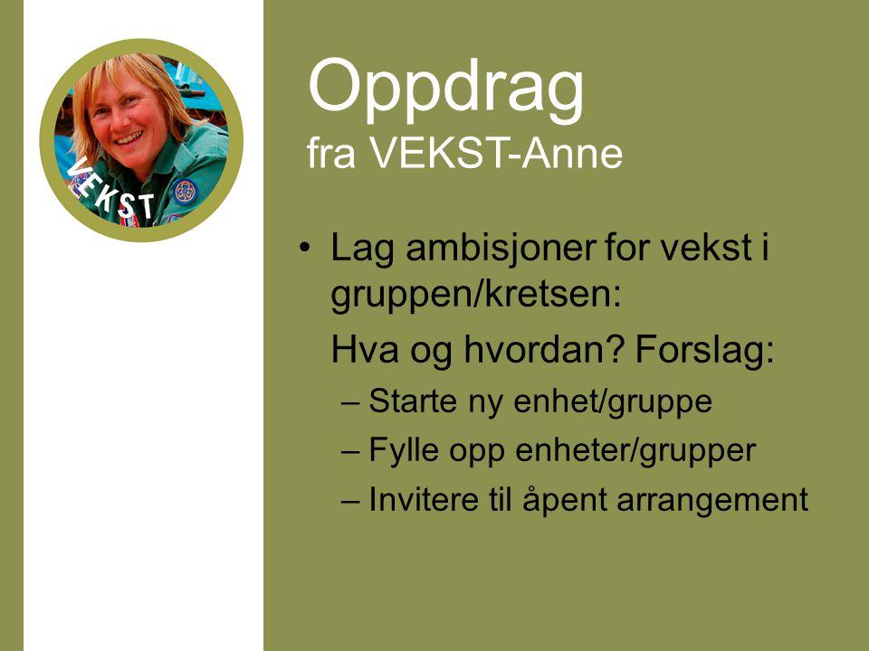 Oppdrag fra VEKST-Anne Lag ambisjoner for vekst i gruppen/kretsen: