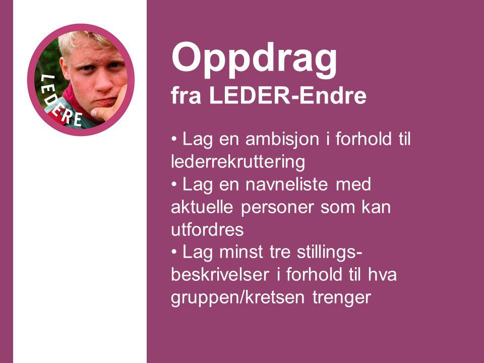 Oppdrag fra LEDER-Endre