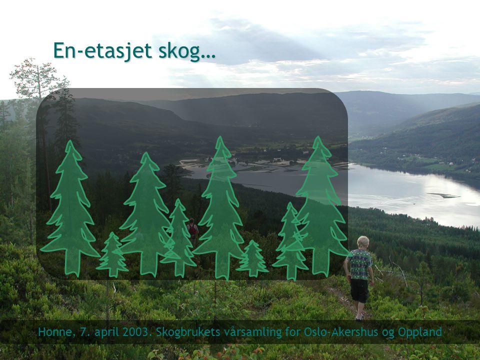 En-etasjet skog… Honne, 7. april 2003. Skogbrukets vårsamling for Oslo-Akershus og Oppland