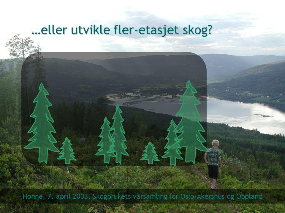 …eller utvikle fler-etasjet skog