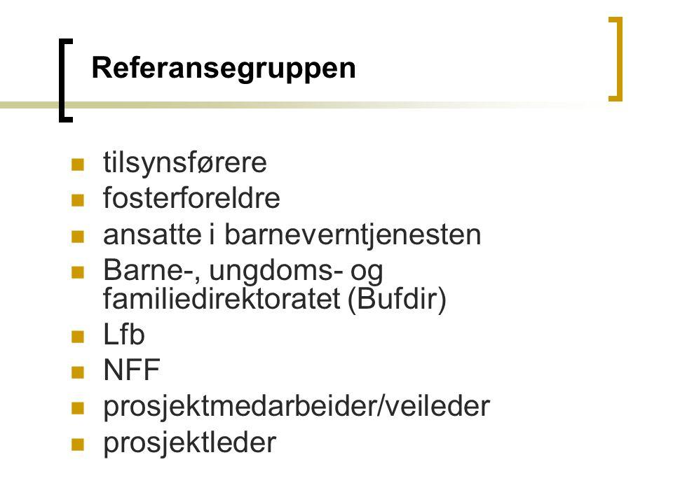 Referansegruppen tilsynsførere. fosterforeldre. ansatte i barneverntjenesten. Barne-, ungdoms- og familiedirektoratet (Bufdir)