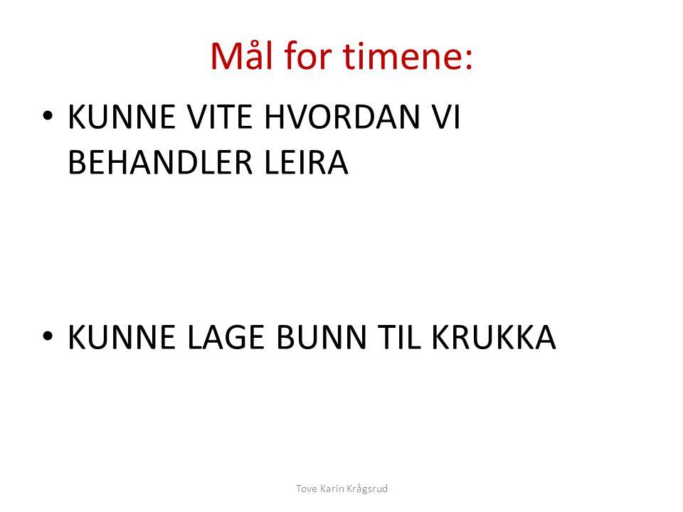 Mål for timene: KUNNE VITE HVORDAN VI BEHANDLER LEIRA