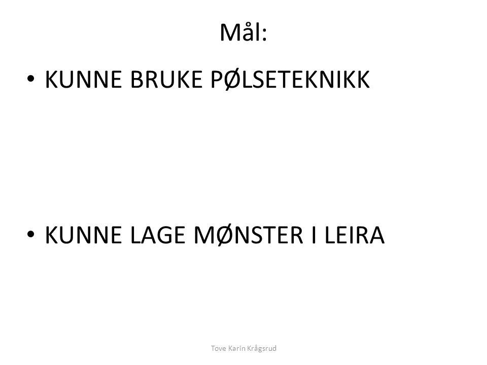 KUNNE BRUKE PØLSETEKNIKK