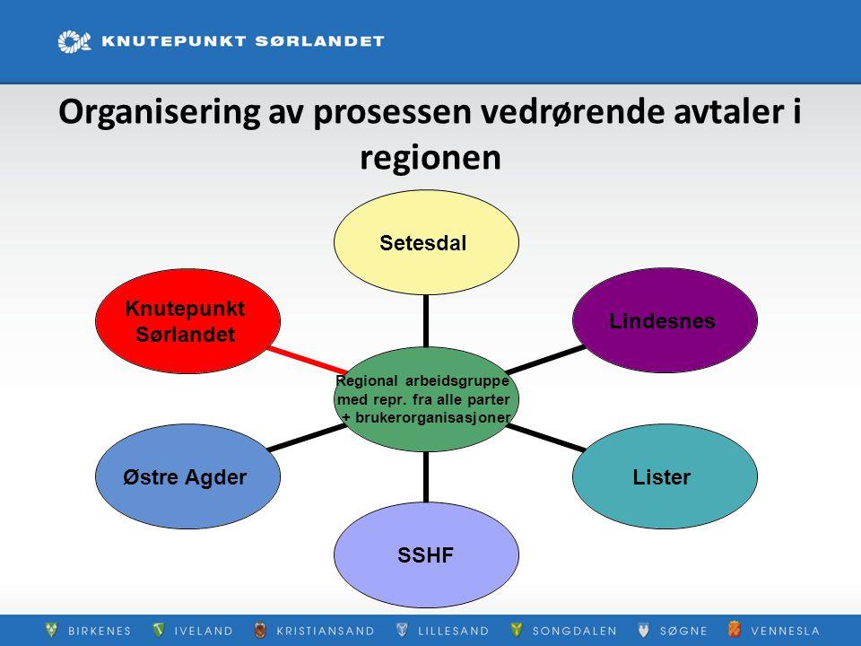 Organisering av prosessen vedrørende avtaler i regionen