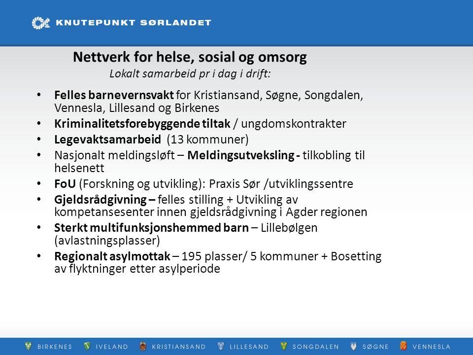 Nettverk for helse, sosial og omsorg Lokalt samarbeid pr i dag i drift: