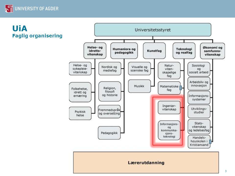 UiA Faglig organisering