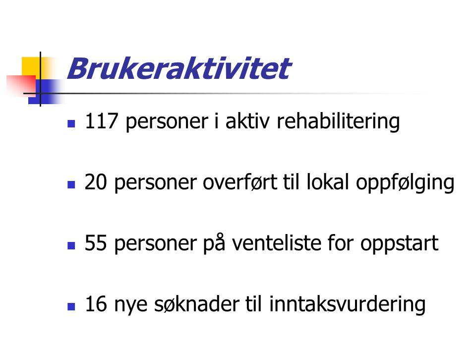 Brukeraktivitet 117 personer i aktiv rehabilitering