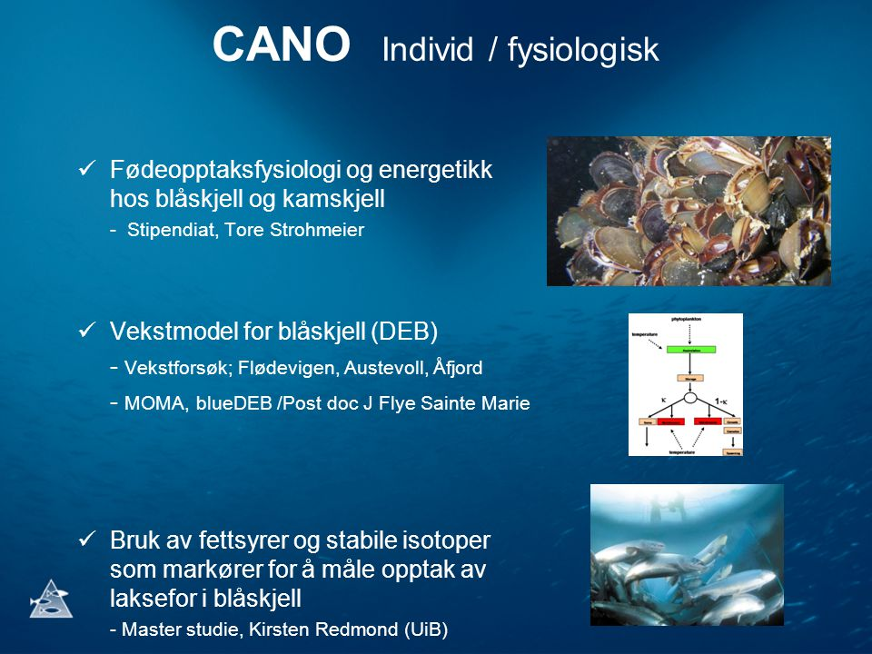 CANO Individ / fysiologisk