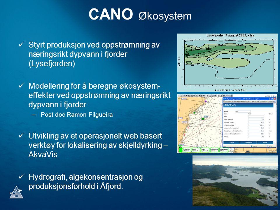 CANO Økosystem Styrt produksjon ved oppstrømning av næringsrikt dypvann i fjorder (Lysefjorden)
