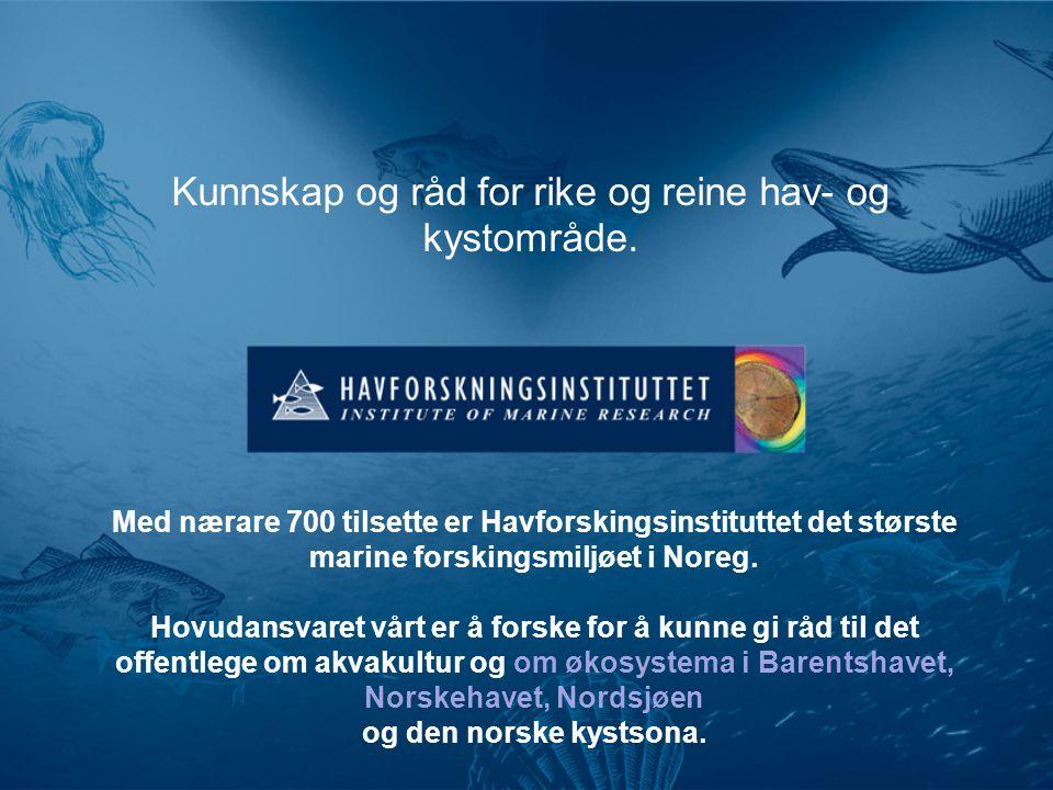 Kunnskap og råd for rike og reine hav- og kystområde.