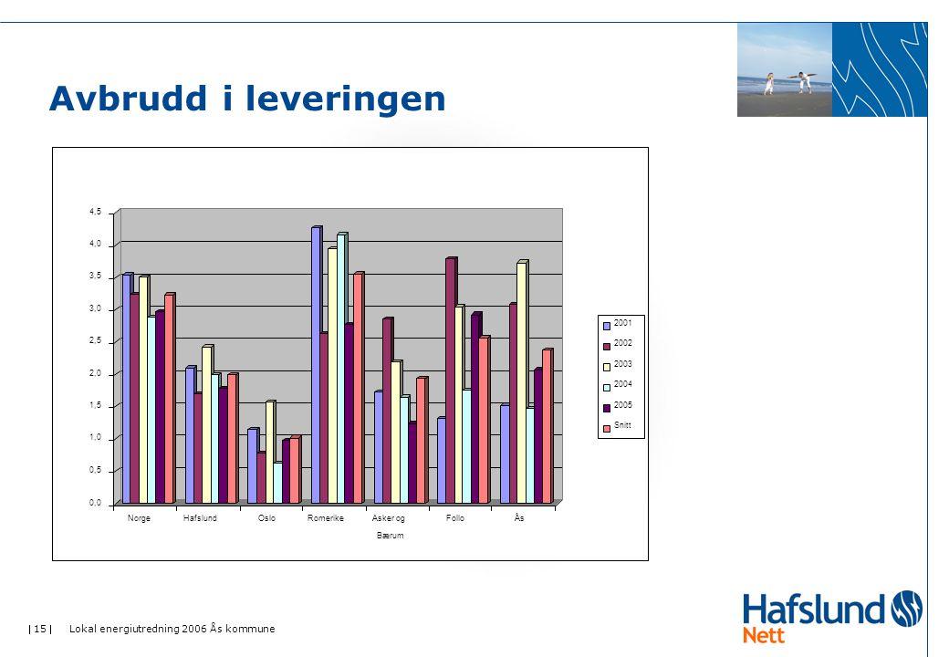 Avbrudd i leveringen Lokal energiutredning 2006 Ås kommune 0,0 0,5 1,0
