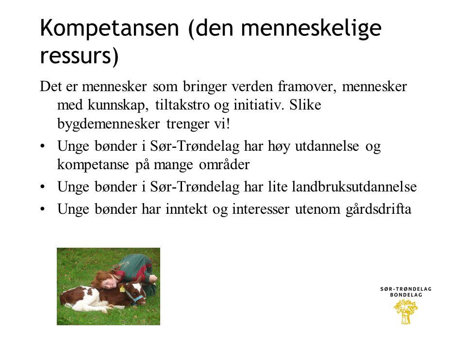 Kompetansen (den menneskelige ressurs)