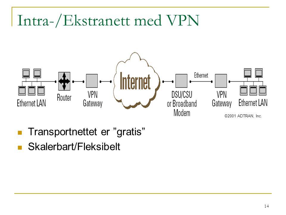 Intra-/Ekstranett med VPN