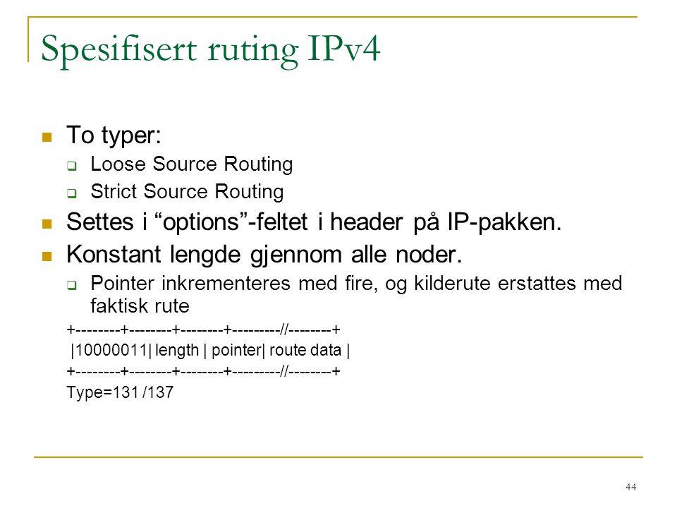 Spesifisert ruting IPv4