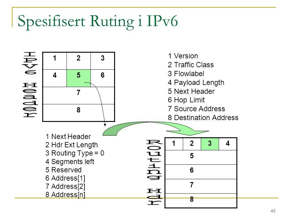 Spesifisert Ruting i IPv6