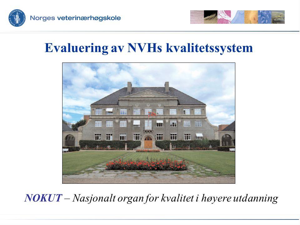 Evaluering av NVHs kvalitetssystem