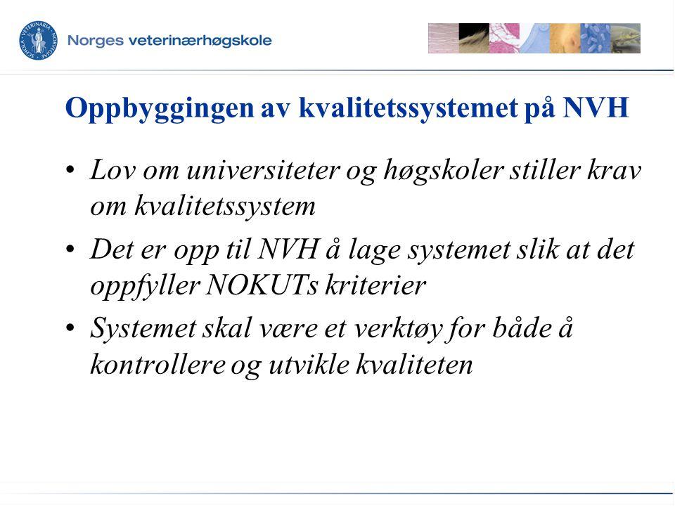 Oppbyggingen av kvalitetssystemet på NVH