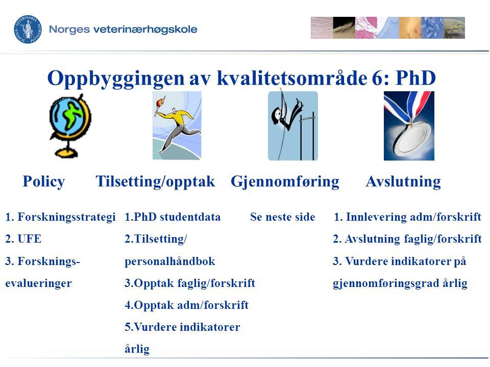 Oppbyggingen av kvalitetsområde 6: PhD