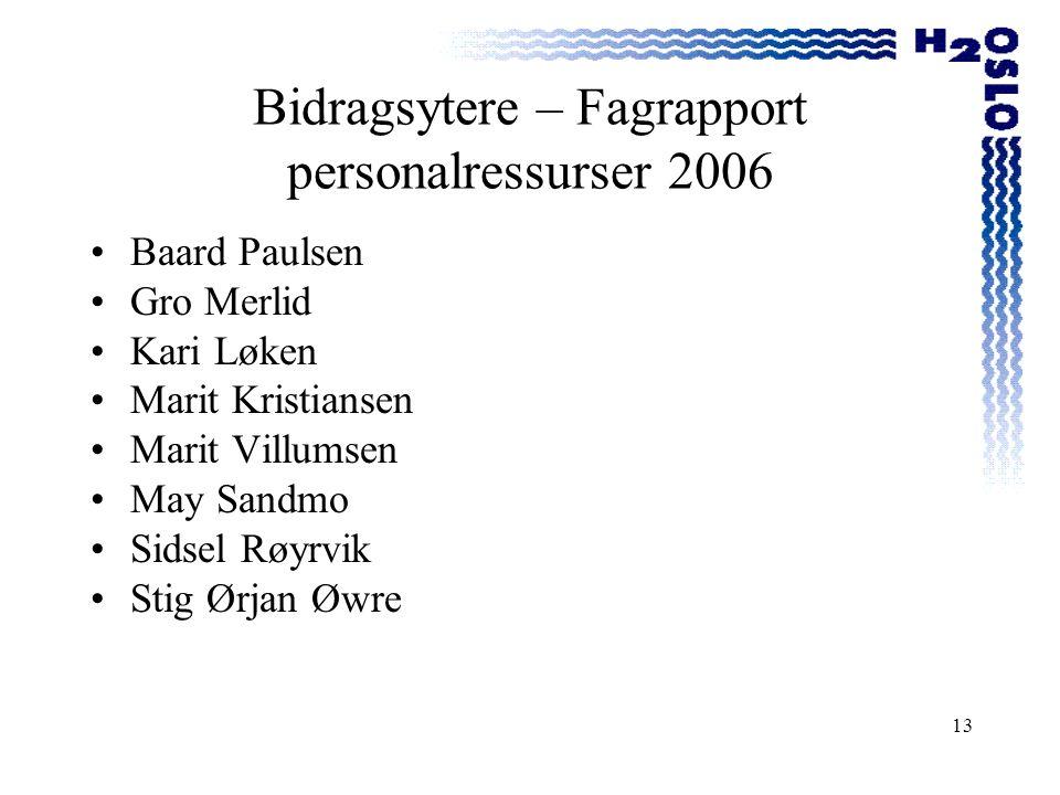 Bidragsytere – Fagrapport personalressurser 2006