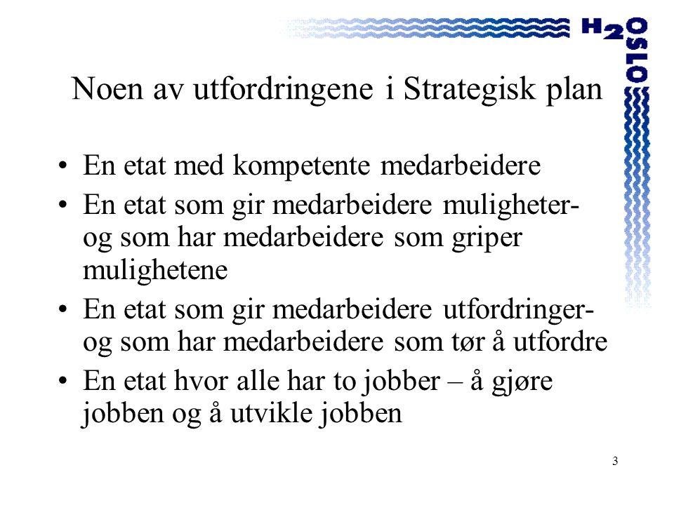 Noen av utfordringene i Strategisk plan