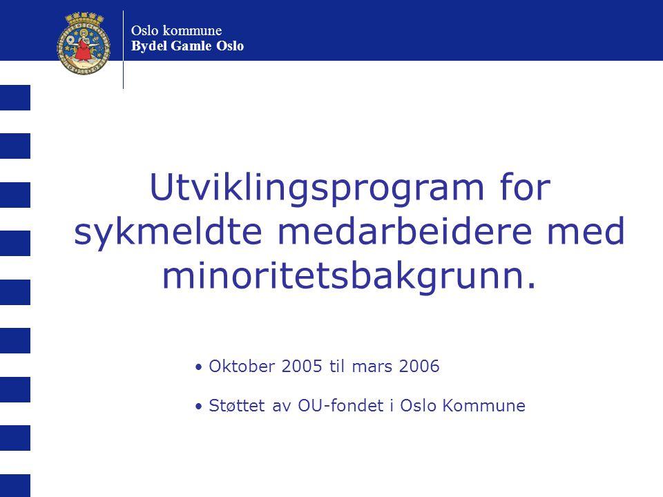 Utviklingsprogram for sykmeldte medarbeidere med minoritetsbakgrunn.