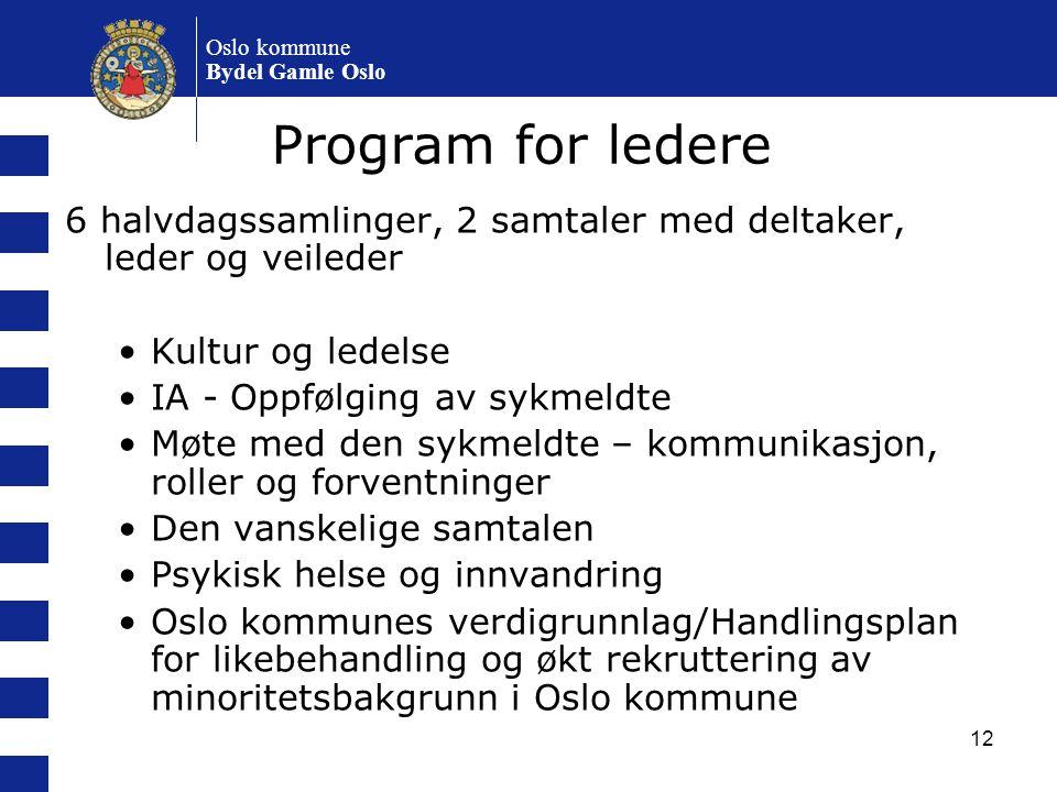 Oslo kommune Bydel Gamle Oslo. Program for ledere. 6 halvdagssamlinger, 2 samtaler med deltaker, leder og veileder.