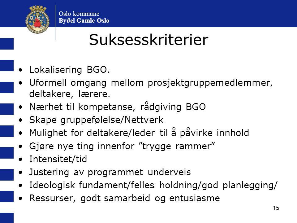 Suksesskriterier Lokalisering BGO.