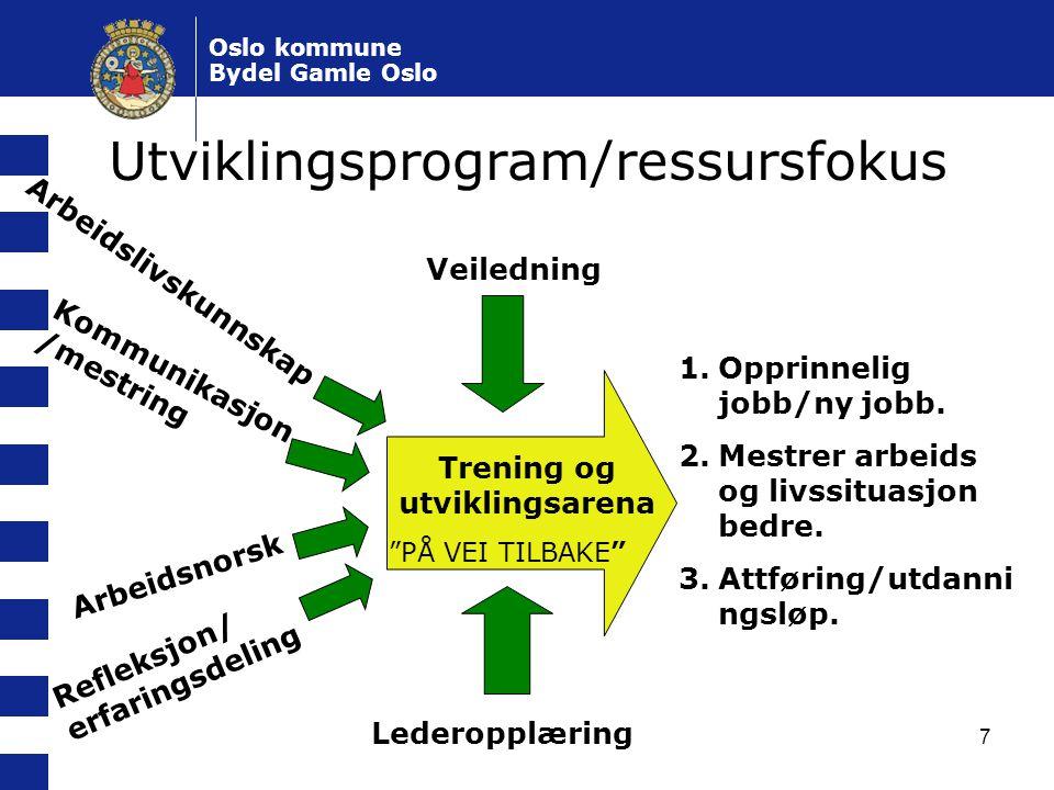 Utviklingsprogram/ressursfokus